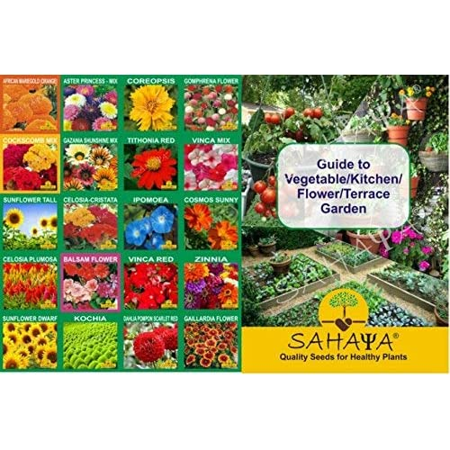 Flower Seeds Buy Flower Seeds Online At Best Prices In India