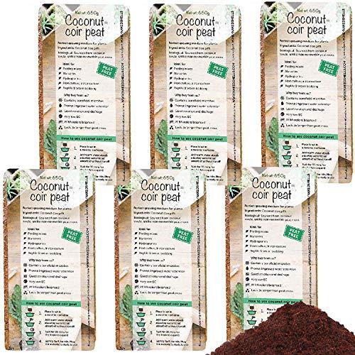 NAKED SHELLS ®️ Kokos-Kokos-Steine - Packung mit 6 * 650g - Natürlich & Bio - Kokosfaser - Wachstumsmedium für Blumenerde - Kokosfaser-Mulch, Kokos-Brikett - Reptilien-Stein