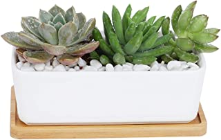 CINOTON Succulent Plant Pots Indoor, 6.69 inch Ceramic Planter Set, Square Flower Pot with Bamboo Tray for Cactus Decor Bedroom Garden Decorations