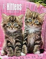 Kittens 2016 Calendar