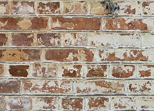 Home Decor Line CR-67249 Old Bricks Kitchen Panel