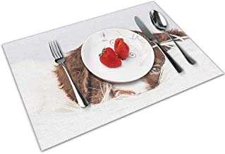 Joseph Placemats Washable Dining Table Place Mats Heat Insulation Stain Resistant(Set of 4) Springer Spaniel Puppy Dog