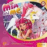 Onchaos Geheimnis (Mia and me 17)