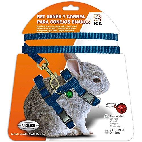 ICA DA1022 Set de Arnés y Correa para Conejos Enanos, Azul