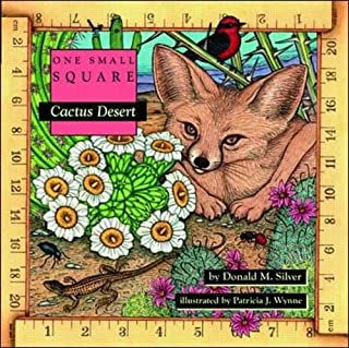 Cactus Desert (One Small Square)