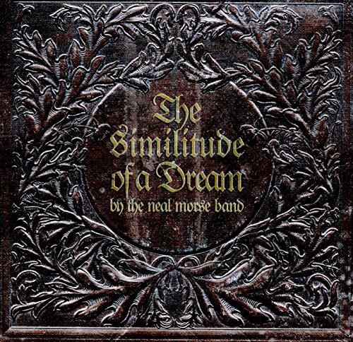 The similitude of a dream
