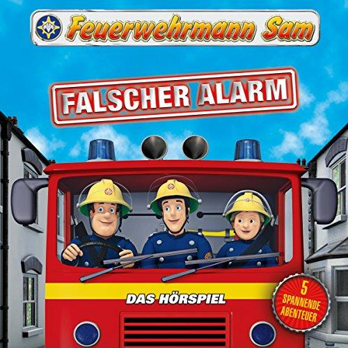 Falscher Alarm Titelbild