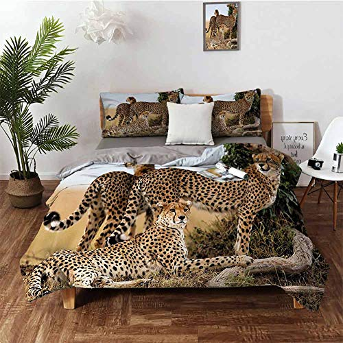 Africa Bedding 3-Piece Full Bed Sheets Set Includes Pillowcases Flat and Fitted Sheets Twin Cheetahs Mother and Two Young Baby Looking for Food Dangerous Exotic Animals Tan Black