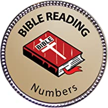 Keepsake Awards Numbers Bible Reading Award, 1 inch Dia Silver Pin Bible Reading Achievements Collection