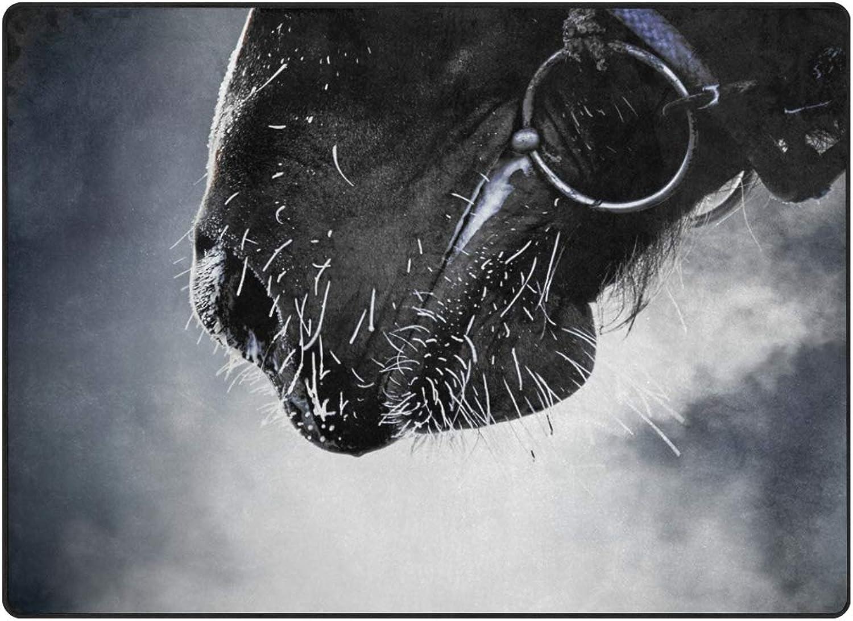 FAJRO Clear Horse Mouth Rugs for entryway Doormat Area Rug Multipattern Door Mat shoes Scraper Home Dec Anti-Slip Indoor Outdoor