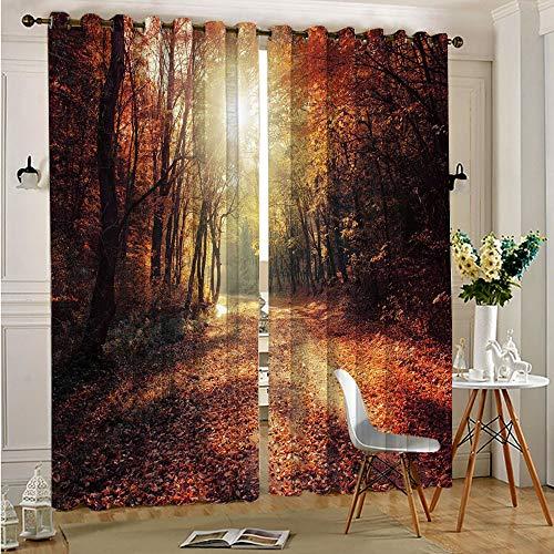 Trelemek Cortina de ventana con ojales de otoño y ojales para ventana que cubren el bosque de otoño con eficiencia energética, 52 x 84 cm