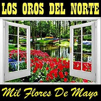 Mil Flores de Mayo