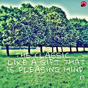 The Classic Like a Gift That is Pleasing Mind 13