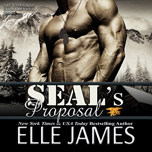 SEAL's Proposal audiobook cover art