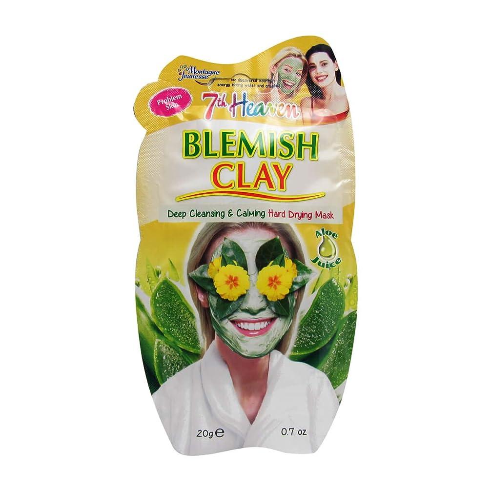 リーダーシップ余韻ポップMontagne Jeunesse Blemish Mud Mask 20gr [並行輸入品]