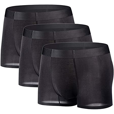 3 Pack Mens Boxer Shorts Ice Silk Mesh Underwear Sexy Super Soft Breathable Anti Chafing Boxers Briefs