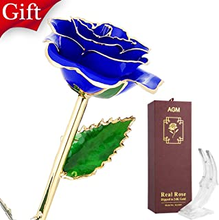 AGM 24k Blue Gold Rose Flower with Long Stem Real Rose Dipped in Gold, Gift for Her Mom Wife Girlfriend Women Girls Christmas, Thanksgiving, Valentine's Day, Birthday, Mother's Day, Wedding
