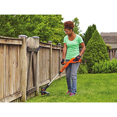 BLACK+DECKER 20V MAX String Trimmer/Edger Kit, 10-Inch (LST201)