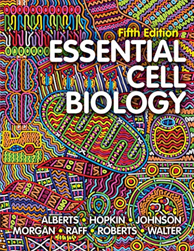 Compare Textbook Prices for Essential Cell Biology Fifth Edition Fifth Edition ISBN 9780393680379 by Alberts, Bruce,Hopkin, Karen,Johnson, Alexander D.,Morgan, David,Raff, Martin,Roberts, Keith,Walter, Peter