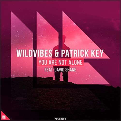You Are Not Alone by Wildvibes & Patrick Key & Revealed