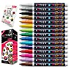 Fine Tip Paint pens for Rock Painting - Wood, Glass, Metal and Ceramic Works on Almost All Surfaces Set of 15 Vibrant Oil Based fine Point Paint Markers, Quick Dry, Water Resistant 141[並行輸入]