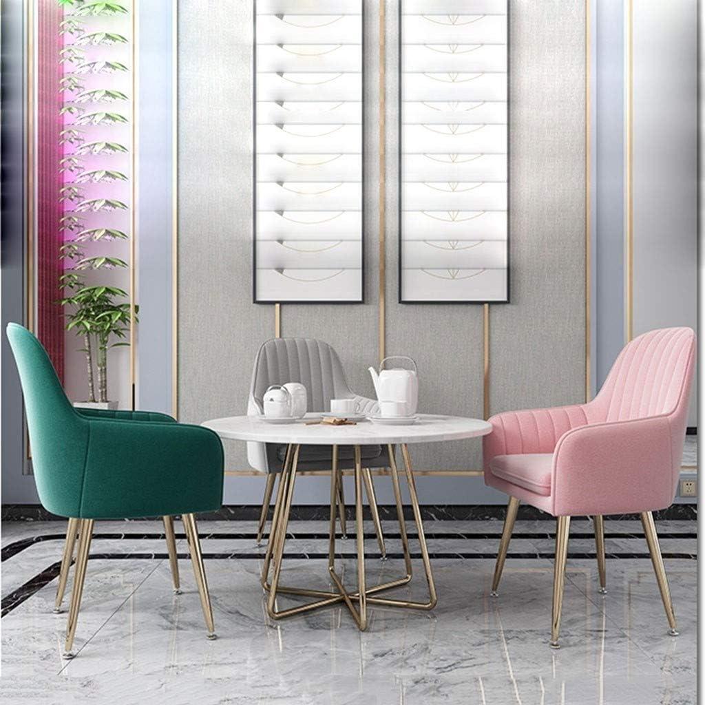 HEJINXL Chaises Salle Manger Chaise Cuisine Salon Comptoir Tampon Indépendant Velours Pieds Réglables Antidérapants Fer Forgé Fauteuil Tub Chair (Color : E) G