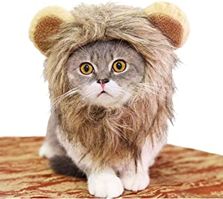 Meihejia Lion Mane Costume for Cat & Small Dog Halloween Costumes