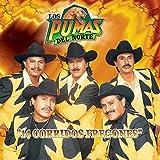 14 Corridos Fregones by Los Pumas del Norte (1999-05-03)