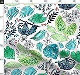 Faultiere, Natur, Dschungel, Pflanzen, Blätter,