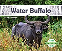 Water Buffalo (Asian Animals)