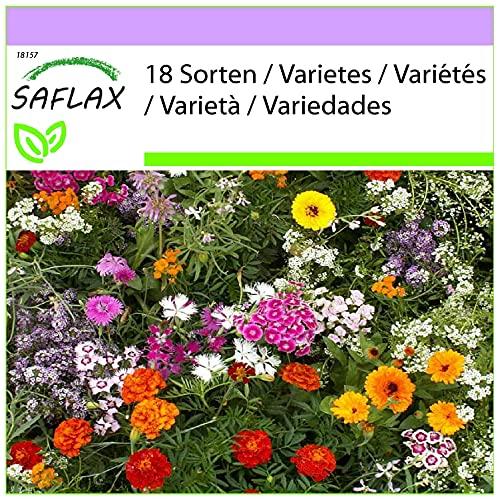SAFLAX - Parfums enchanteurs - 1000 graines - 18 Sorten