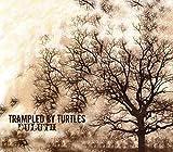 Songtexte von Trampled by Turtles - Duluth