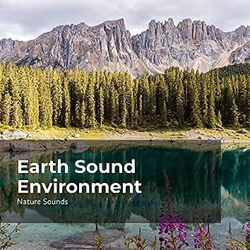 Earth Sound Environment