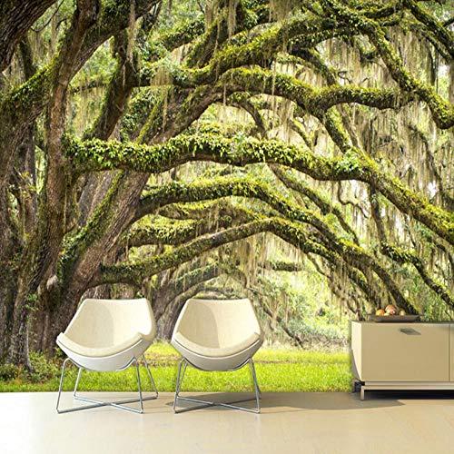 HUATULAI fotobehang voor slaapkamer woonkamer keuken eetkamer van waterdicht zijdestof wandbehang groen bos landschap papel De Parede 400*280cm/W*h