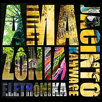 Amazônia Eletrônika - Instrumental