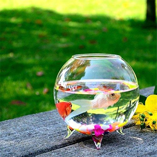 SHINA創造デスクトップ型透明金魚ボウル ミニ水族館ホームデコレーション植木鉢