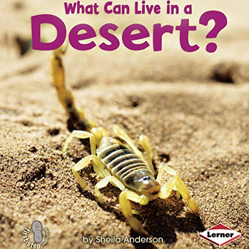 What Can Live in a Desert? copertina