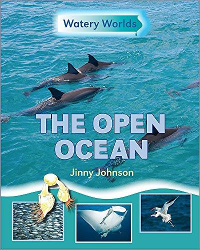 The Open Ocean (Watery Worlds)