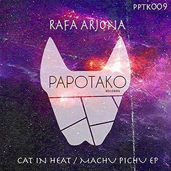 Cat In Heat / Machu Pichu Ep