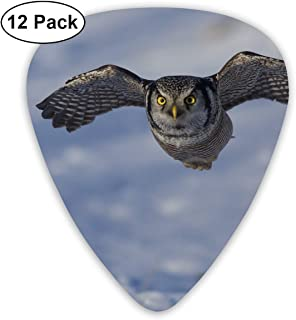 HAIDILUN Snown Fat Hawk Owls Guitar Picks Plectrums Acoustic Guitar Ukulele Picks 0.46 Mm, 0.73mm, 0.96 Mm,12 Pack