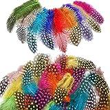 Dancepandas Plumas de Colores Carnaval 500PCS Plumas de Gallo Decoracion Plumas Manualidades Colores para Manualidades de Bricolaje, Aretes de Bricolaje, Decoración para el Hogar, Boda, Fiesta