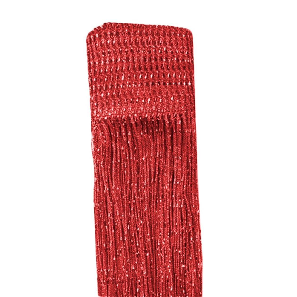 バンカー恐れる本能PROKTH ひものれん 目隠し ストリングカーテン 間仕切り キラキラ光る シルバー糸カーテン 約100 * 200cm 全13色 1枚入 (レッド)