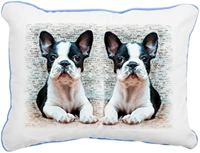 Amazon.com: iLeesh almohada con forma de Bulldog Francés ...
