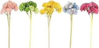 LANQIAN Artificial Flower (5 Color Pack), Fake Flower Succulent Plant Feel (2)