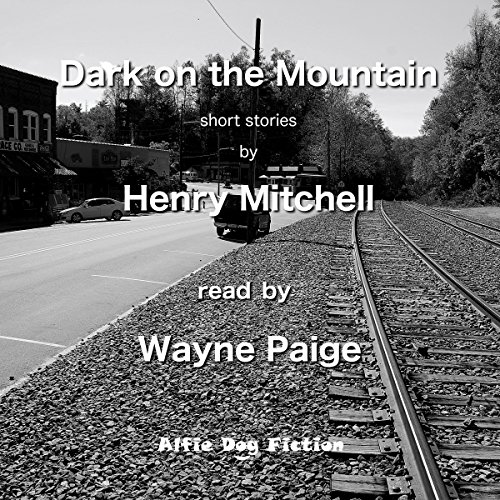 Dark on the Mountain audiobook cover art
