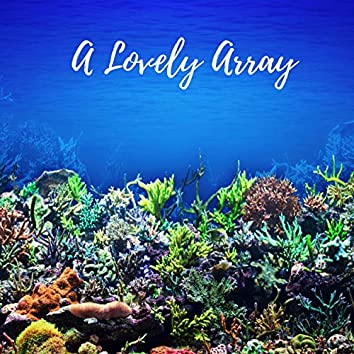 A Lovely Array
