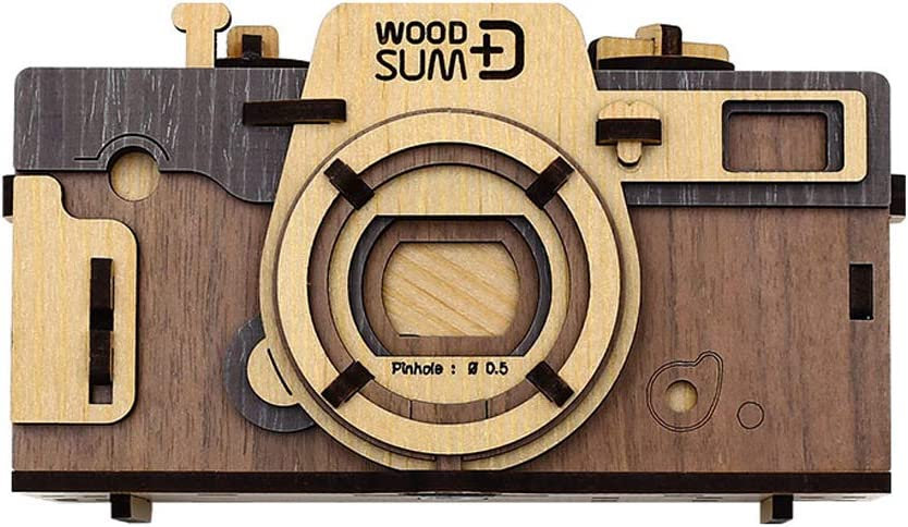 WOODSUM Pinhole Camera Minneapolis Mall Retro Brown Functional 3D Fully New Shipping Free Wooden