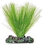 ICA AP1144 Miriophyllium de Aquatic Plants Seda