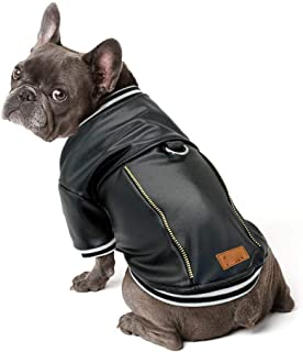 Best french bulldog leather jacket Reviews