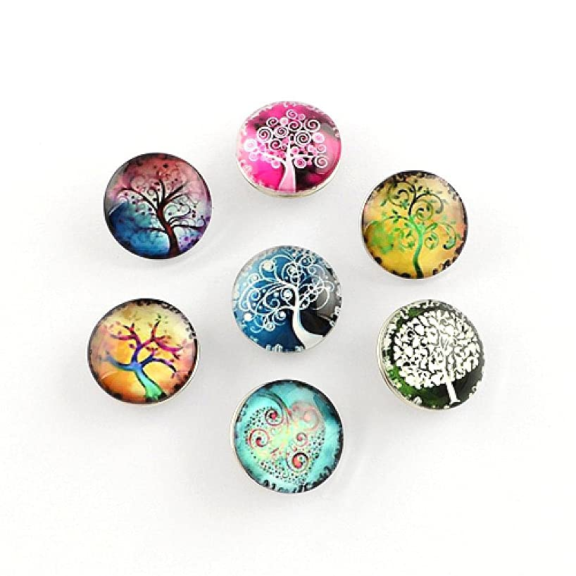 PandaHall Elite 1 Box About 12pcs Flat Round with Tree Pattern Glass Cabochons Snap Buttons for Jewelry Making with Knob Size 5-5.5mm